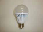 Led bulb japantorg1.JPG