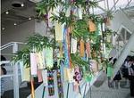 japantorg-tanabata2.jpg