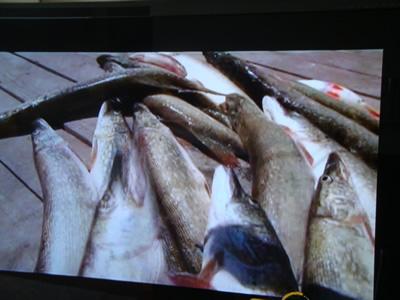 fishing_3.jpg