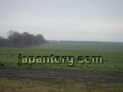 ウクライナの肥沃な黒土